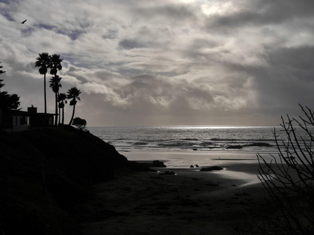 An den Palem erkennt man, dass es unaufhaltsam in Richtung LA geht.